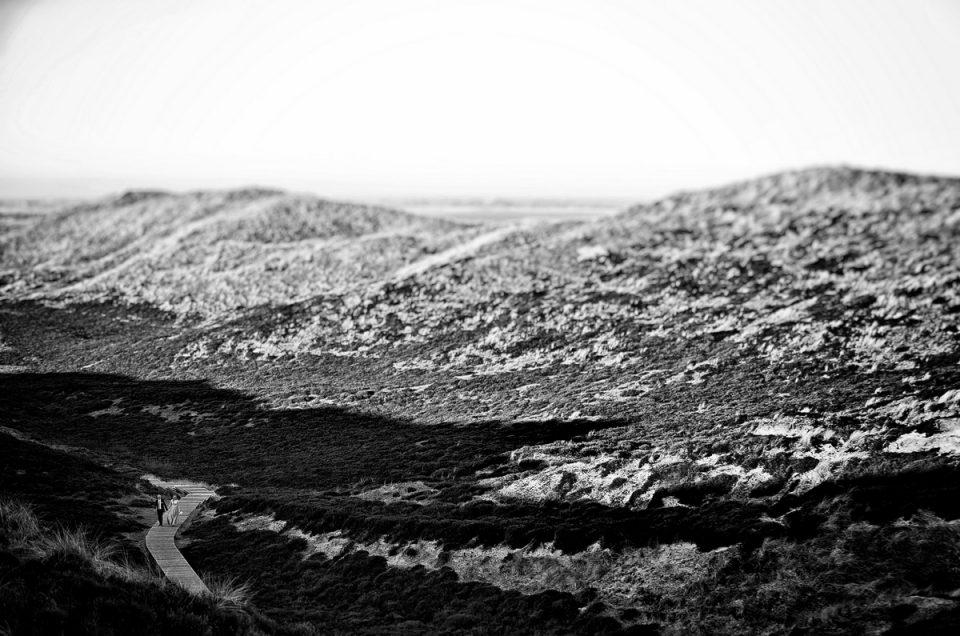 Wenn die Liebe Flügel Verleiht:  TEIL 1 – Das Wintermärchen auf Sylt